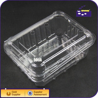 Food Grade Clear PET Plastic Strawberry Packaging Box Container