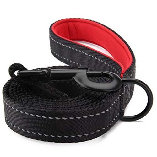 STRONG DOG LEAD With COMFORT GRIP Flat Nylon Pet Puppy Leash