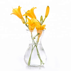 Glass flower vase, glass flower vase for office decoration