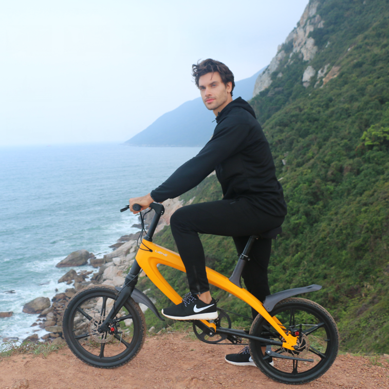 Lehe S1 torque sensor musical mountain electric bike