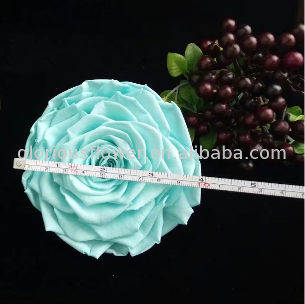 New product long time preserving wholesale online types of cut rose flowers