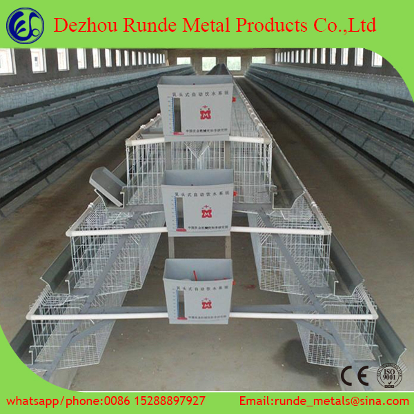 Egg Chicken Cage/poultry Shed Cage For Layer Chicken Farm