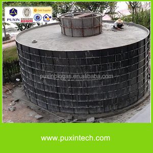 Well structured PUXIN medium size biogas project