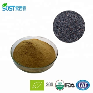 Wholesale wang bu liu xing extract / semen vaccariae extract /Cowherb Seed P.E