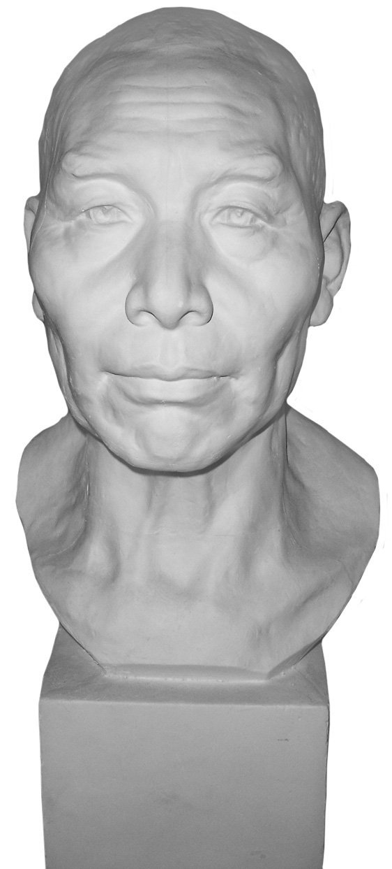 """Torino GES-93 Life Size Bust Aging Man Plaster Cast Mannequin, Great for Artists, Artistic piece, Color: White, Size: 9"""" X 7"""" X 23"""""""