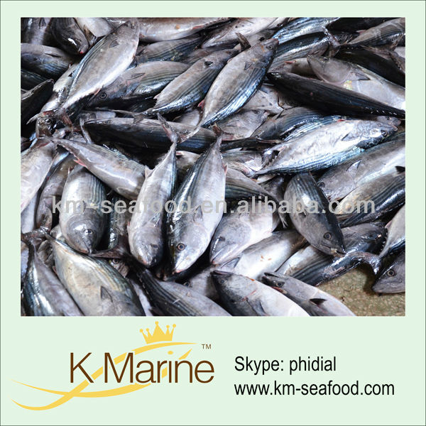 Types Of Fresh Seafood Fish For Sale