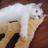 New Arrival Pet Products Premium luxurious paw shaped pet cat dog blanket