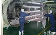JK-FD-100N High Efficiency Food Freeze Dryer Price/Fruit Drying Machine