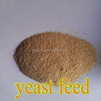 Corn Grain, Wheat Bran, DDGS Make Yeast 60% For Animal Feed