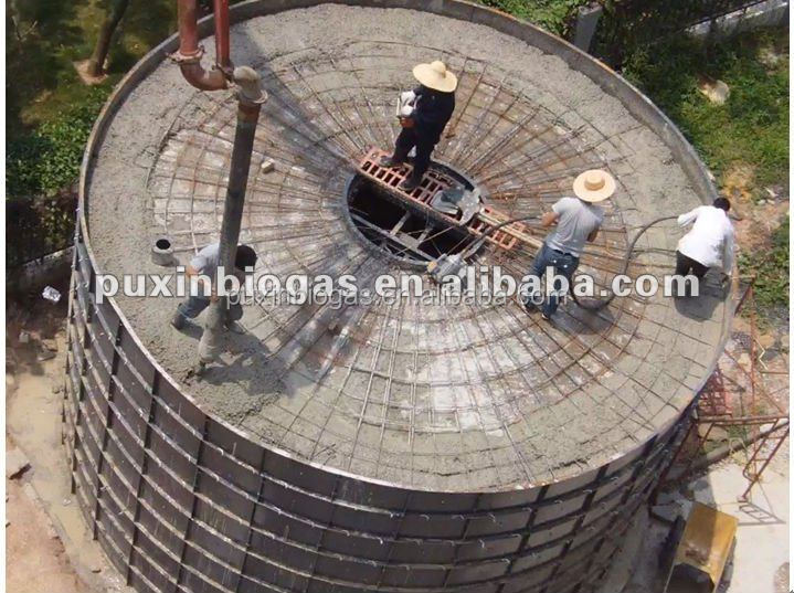 100M3 PUXIN Biogas Digester for Chicken Farm with 20000 chicken