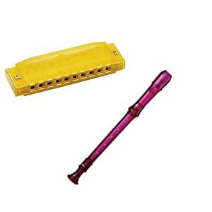 My First Recorder / Harmonica Pack -BPA FREE Purple Translucent Recorder w/Yellow Hohner Harmonica