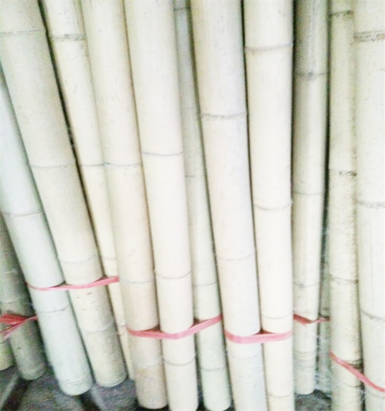 Natural smooth Moso bamboo poles for farm