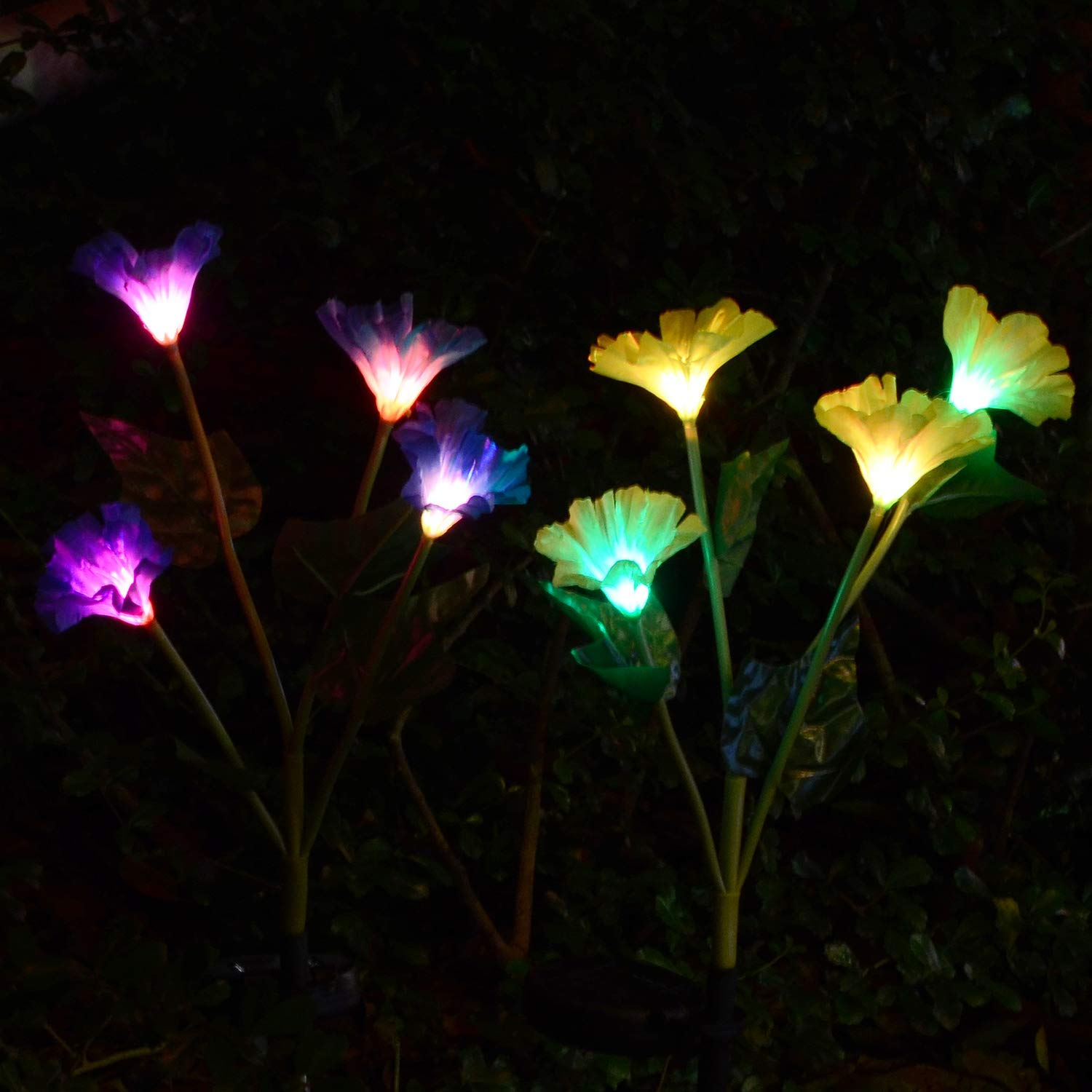 Get Quotations Doingart Outdoor Solar Garden Stake Lights 2 Pack Ed With 8 Morning Glory Flower