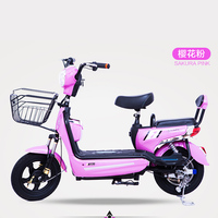 Factory direct sale cheap malaysia price mini electric bike