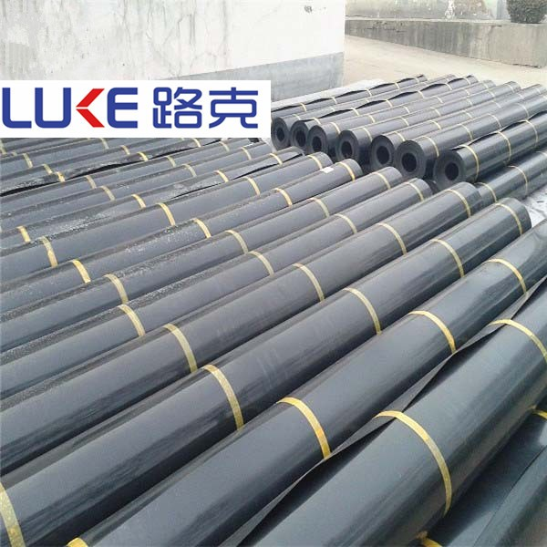 Hdpe Geomembrane Waterproof Plastic Liners Geomembrane