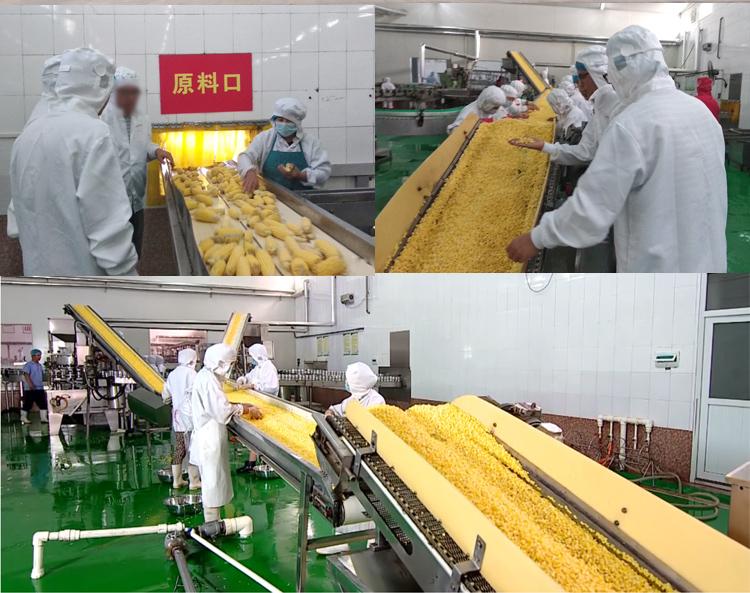 Maiz Dulce 340g Zucker mais