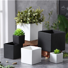 mini white decorative cactus ceramic plant pot planter with metal holder