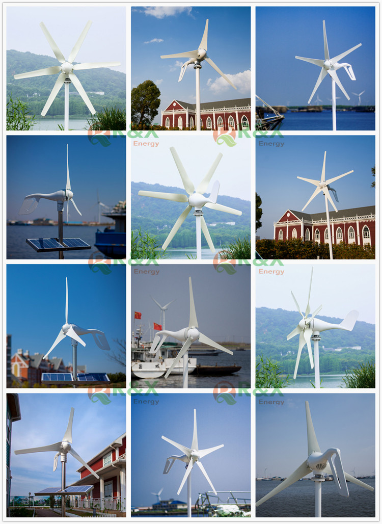 10 Years WARRANTY 400W Wind Turbine Generator For Marine Ship Or Home Use