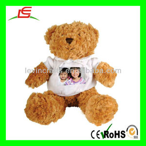 LE-D670 Personalized Teddy Bear, Photo Teddy Bear, Teddy Bear Photo Gift