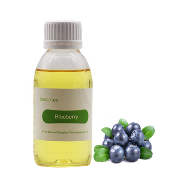 Best quality blueberry fruit concentrate aroma flavor