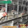 Best selling products 3 layers breeding pig cage with CE certificate