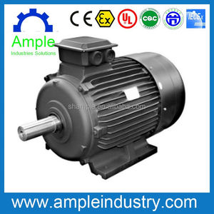 High quality electric vehicle ac motor