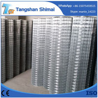 China 2x2 galvanized welded wire mesh home depot