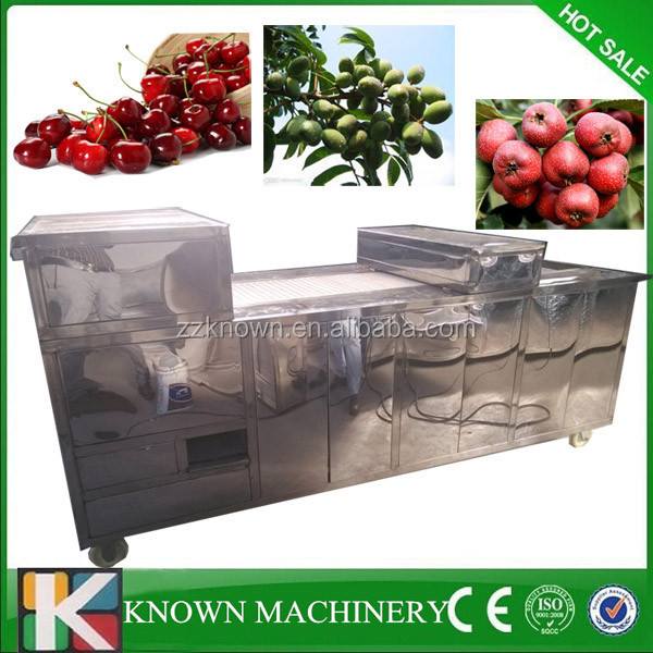 Industrial cherry pitter,electric cherry pitter machine,cherry pitting machine
