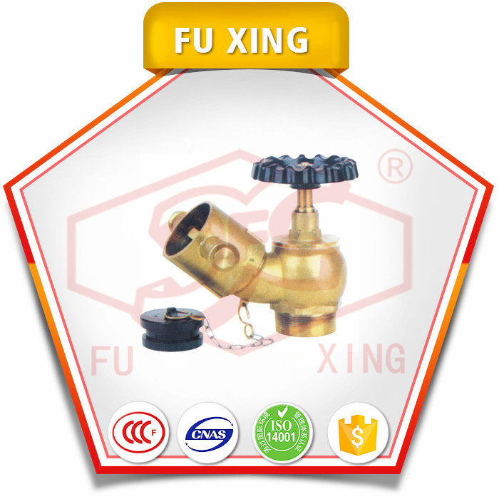 China manufacturer waterous fire hydrant OEM