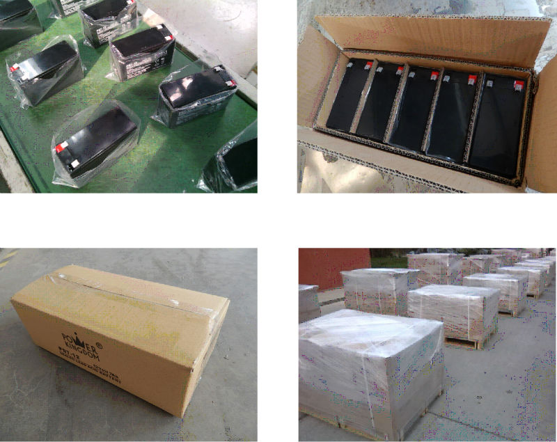 Power Kingdom High-quality 100ah agm battery wholesale vehile and power storage system-1