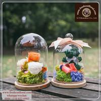 Supersize Glass Terrarium Bowls For Plants Cube Simple Small For Mini Flowers
