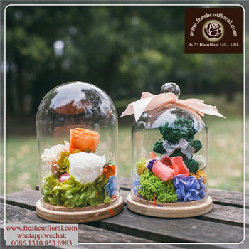 Supersize Glass Terrarium Bowls For Plants Cube Simple Small For