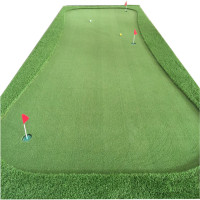 Golf Putting Green and Golf Putter