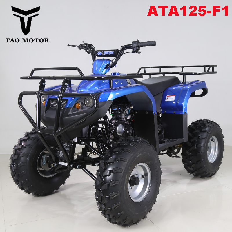 Tao Motor Quad ATV 125ccATA125-F1 with CE ECE
