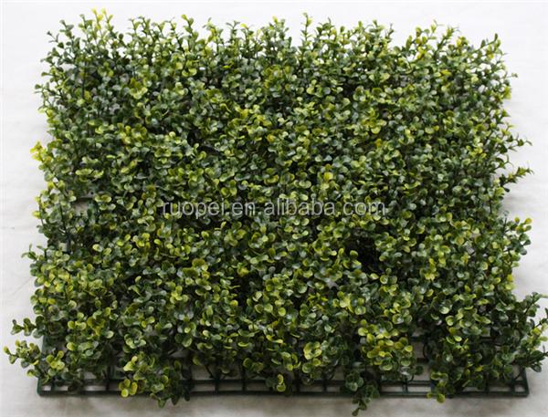 Tapijt Voor Balkon : Kunstmatige buxus gras tapijt voor balkon privacy screen buy