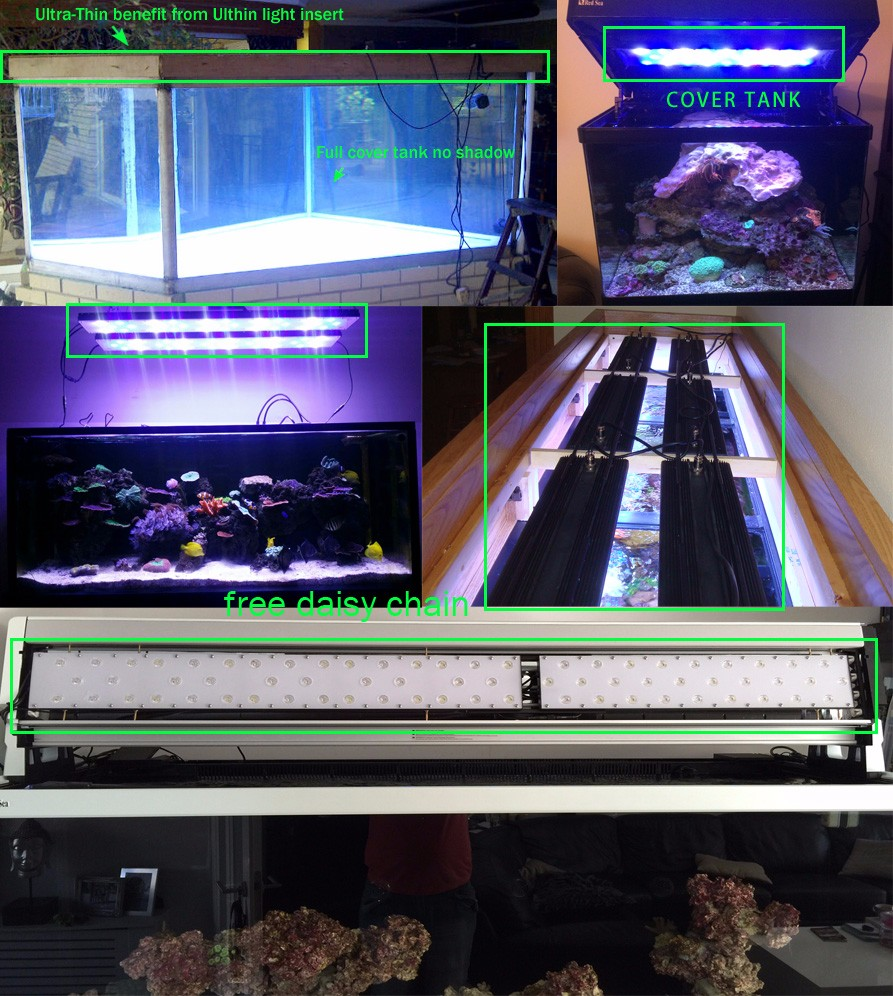 Wholesale 24inch 60w arowana led light aquarium freshwater 4 ...