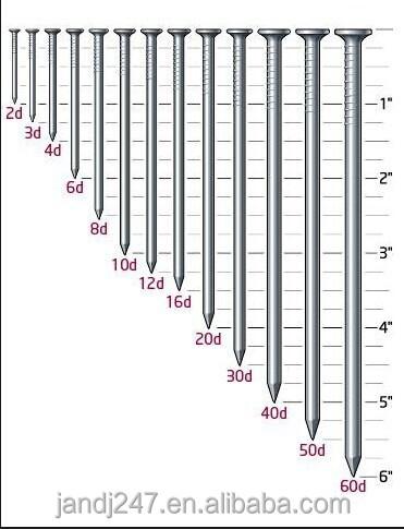 550pc 9 Sizes Common Household Nail Assortment Panel ... |Common Nails Sizes