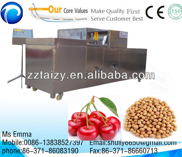 Fruit Red Dates/ Pulm/Cherry/Olive Pitting machine 0086-13838527397