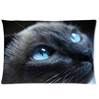 Generic Custom Blue Eyes Cat Cool Design Printed Zippered Pillowcase Cushion Case 20*30(Twin Sides)