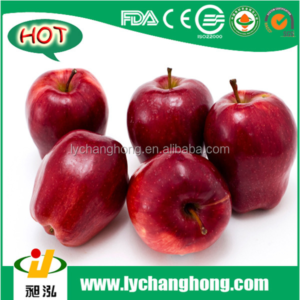 hot] Fresh Apples Red Delicious /fruit Apple Red Delicious