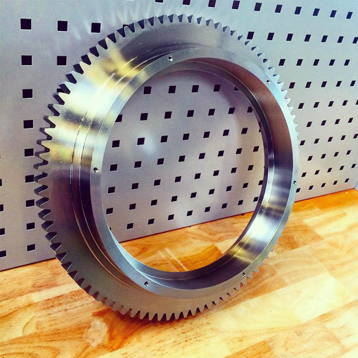 OEM manufacturer Stainless steel 316 spur gear for the food industry