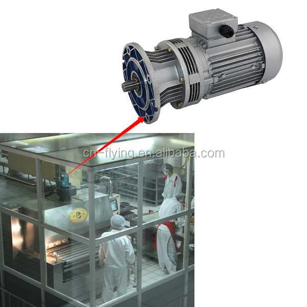 WB series cycloidal Speed reducer for Food machinery mock meat making machine