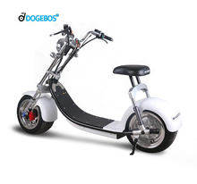 SC14 EEC/COC/CE EUROPE Citycoco 1000w electric scooter citycoco