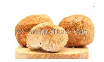 Organic Lion's Mane Mushroom Powder
