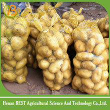 singapore , indian potato importers and exporters/potato traders in west bengal price