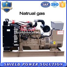 Natural Gas Generator low fuel cost