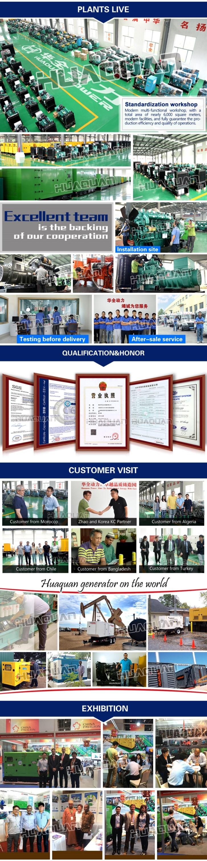 Chinese 325 Kva Diesel Generator Fuel Consumption Per Hour Buy