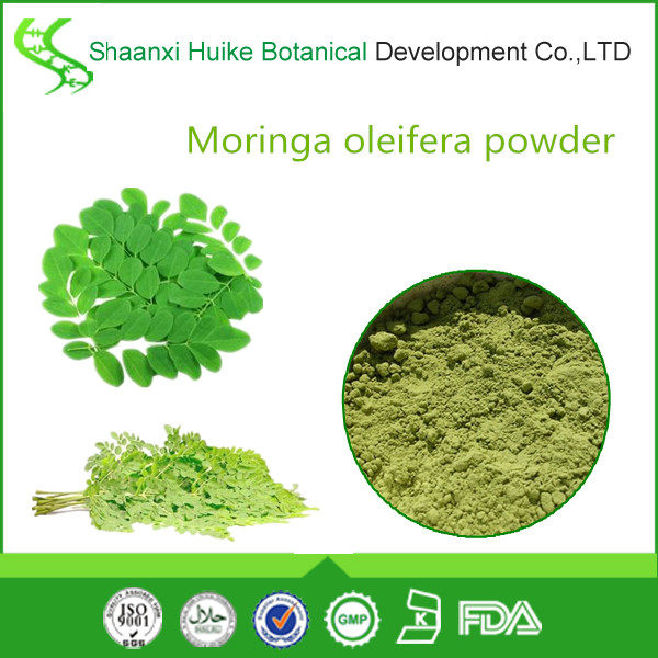 Wholesale Moringa Powder Leaf/moringa Oleifera Leaf Powder