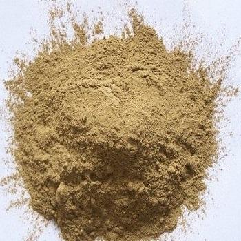 100 Natural Hoodia Gordonii Extract Powder 10 1 Buy Hoodia