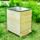 Beekeeping equipment bee hive wholesale national beehive wooden Australian bee hives boxes for sale